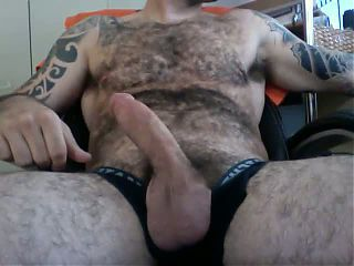hot hairy bear spunk